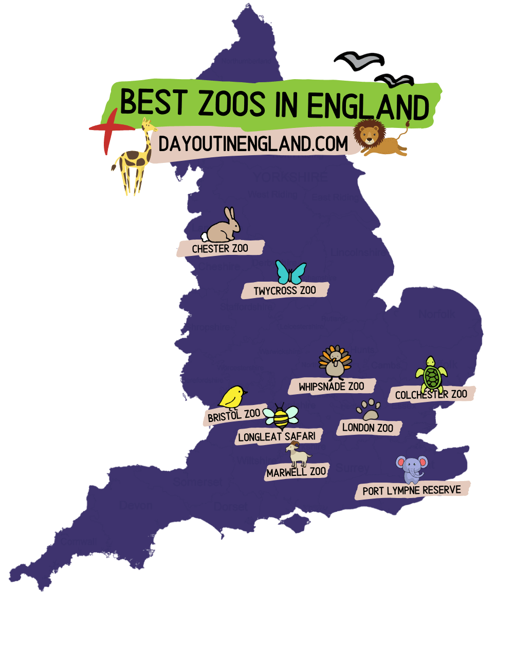 Best zoos in england