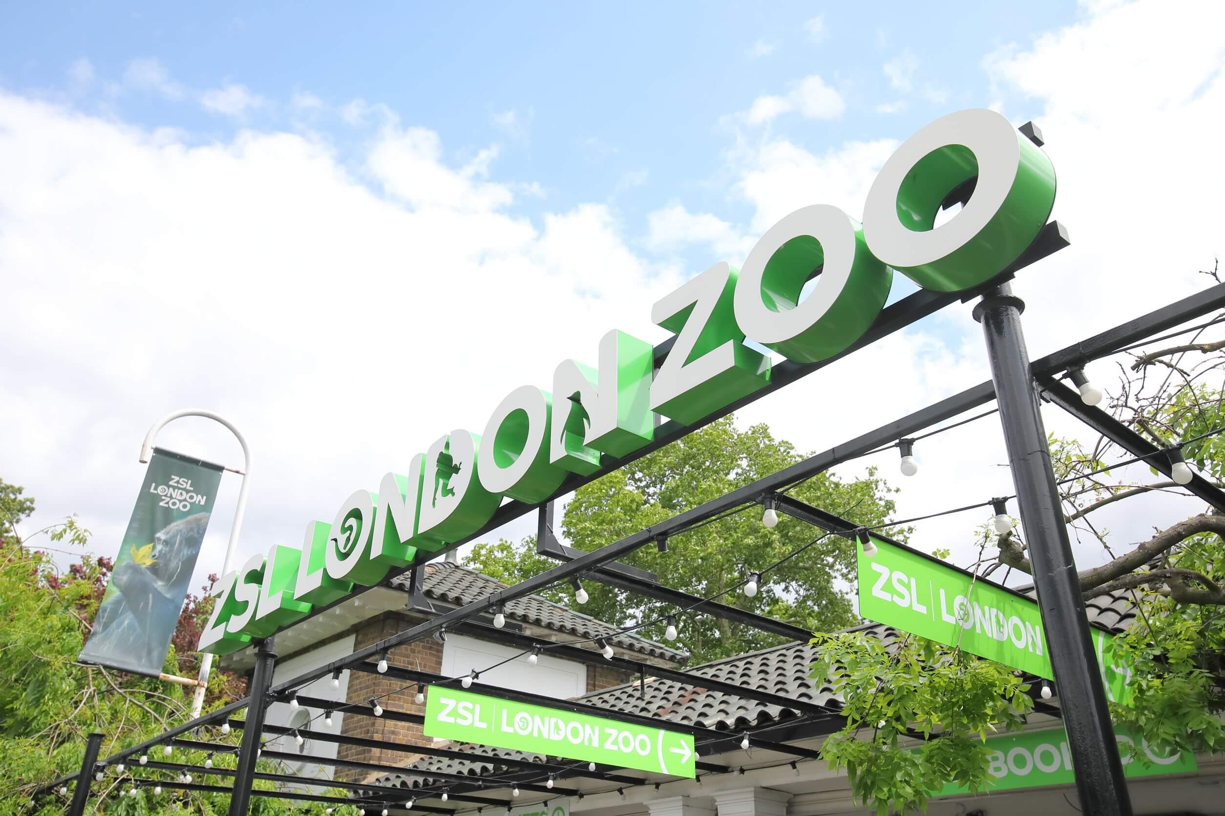 london england - june 3, 2019: zsl london zoo london uk