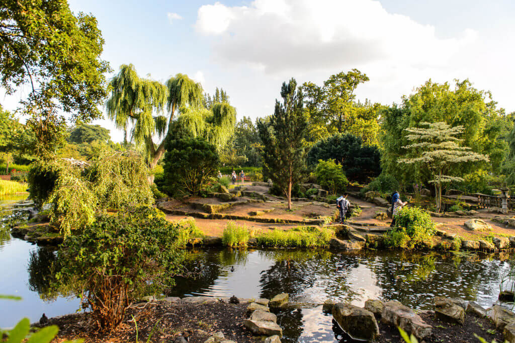 LONDON, ENGLAND - JULY 23, 2016: Nature of the Regent's Park, one of the Royal Parks of London.