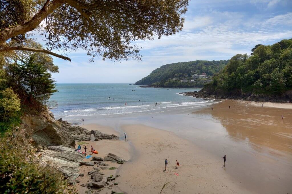 day out in salcombe