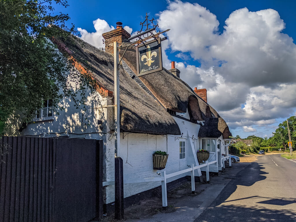 best pub in the new forest