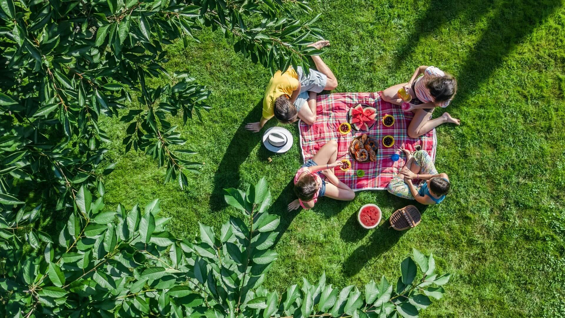 picnics outside