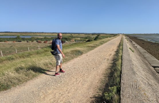 Walking round Farlington Marshes