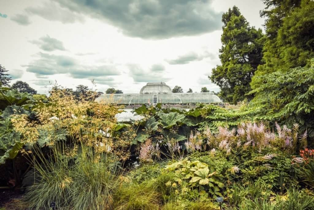 Day out in Surrey at Kew Gardens