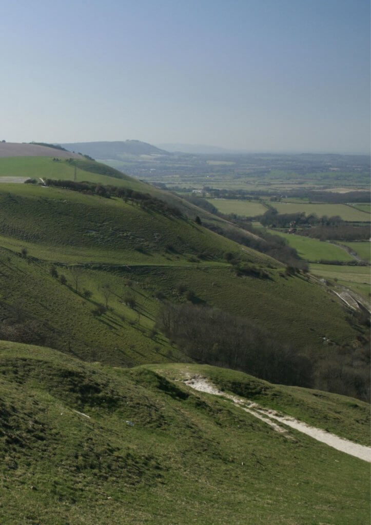 day out in the south downs
