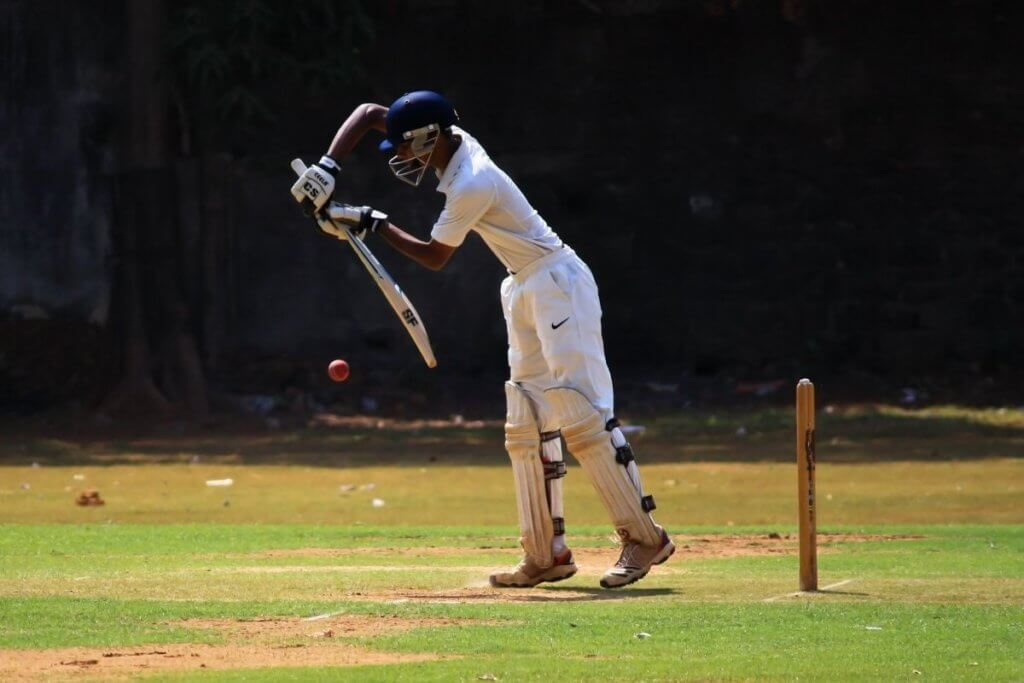 what to know about cricket