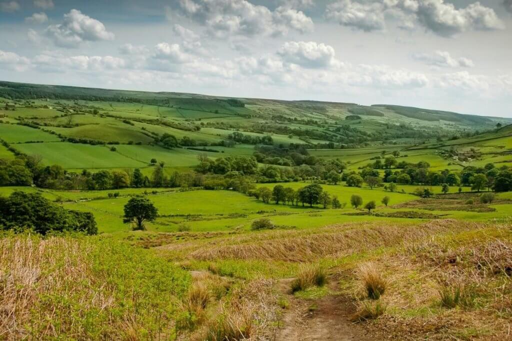 what to do north york moors
